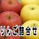 りんご詰合せ 長野県産 りんご